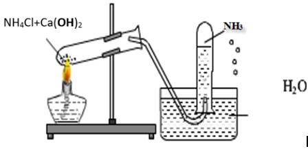 Một học sinh đã điều chế và thu khí NH3 theo sơ đồ sau đây, nhưng kết quả  thí nghiệm không | VietJack.com
